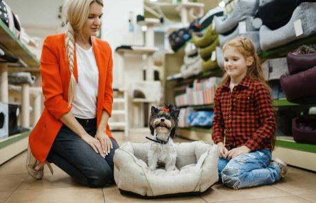 חנות חיות בבת ים – איך קונים מזון לכלב בצורה נכונה?