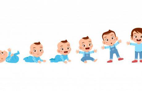 מחשבון התפתחות תינוקות – שעתם היפה של מחשבוני הרשת